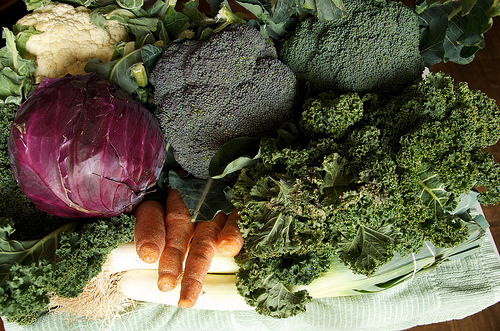97th Street GreenMarket November 30, 201 by smith_cl9, on Flickr