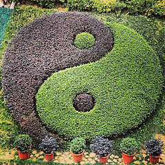 Yin Yang by Sjors Provoost, on Flickr