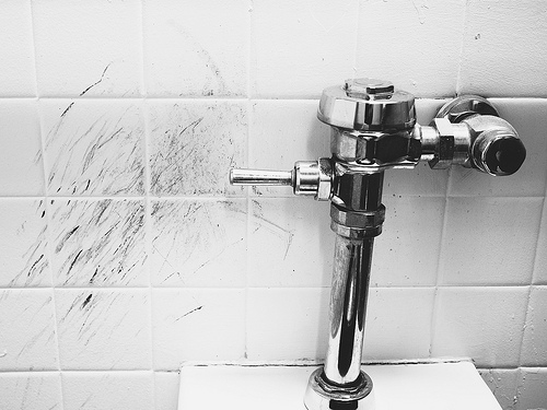 Urine kick to flush by Robert S. Donovan, on Flickr