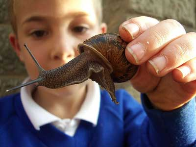Boy holding snail slime in his hands