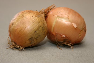 Onions and the Superstitions that Surrounds Them